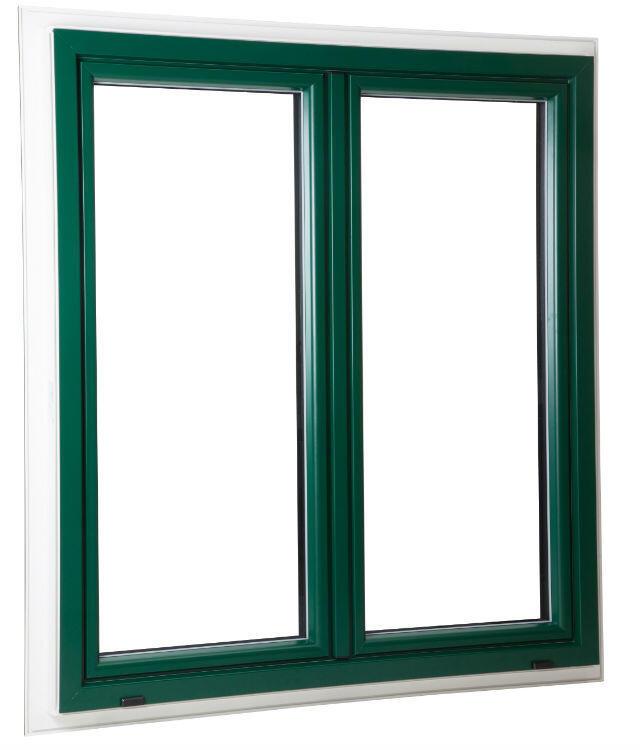 Fenêtre TopAlu Vert s6005